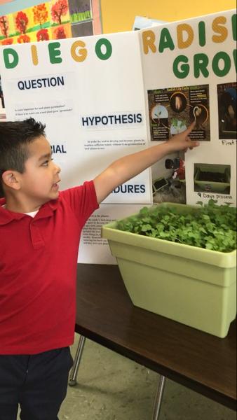 2018 Science fair